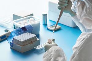 Testing samples in a lab for coronavirus